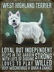 WEST HIGHLAND WHITE TERRIER WESTIE DOG METAL SIGN TIN PLAQUE PRINT PICTURE 714