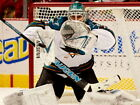 Antti Niemi San Jose Sharks Hockey Goaltender HUGE GIANT PRINT POSTER $12.95 USD on eBay