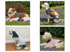 ROSEWOOD DOG/PUPPY KNITTED JUMPER SWEATER AVAILABLE IN 3 DESIGNS