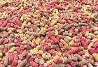 High Energy Premium Mixed Mealworm, Berry, Insect Suet Pellets - Wild Bird Food