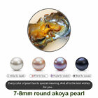 Lot 1/5/10/25pcs DIY Wrapped Akoya Oysters with Large Pearls Gift Two sizes #nt