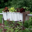 NEW POT Flower Prosperplast Flowerpot Plant Balcony Terrace DCRO600