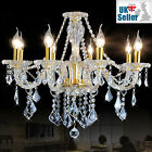 Genuine K9 Crystal Chandelier CLEAR GOLDEN 6, 8, 10 Light Twisted Arm Maple Leaf