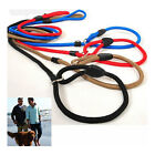 Nylon Rope Adjustable Traction Collar Pet Dog Leash Slip Lead Strap For Train US