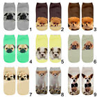 Animal Dogs Socks Printed Casual 3D Fashion Unisex Hot Sale