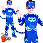 Catboy PJ Masks Super Hero Boys Costume Book Day Week Cat Animal Fancy Dress New