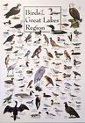 Every Bird Species in North America Art Fabric poster 17x13