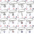 Memory Bracelet Charm Dog Cat Pet Loss Silver Pendants Paw Print Heart Gifts Tag