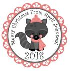 Woodland Raccoon Christmas Stickers