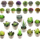 Artificial Succulent Plants Mini Potted Fake Plastic Flower Landscape Home Decor