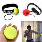 Punch Exercise Fight Ball With Head Band For Reflex Speed Training Boxing /DS