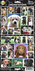 DOG PUPPY STICKERS LOTS OF BREEDS, BOXERS, BULLDOGS,POODLE MANY MORE NEW