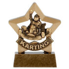 Go Karting Trophy 8.25 cm FREE Engraving up to 30 Letters Option Of Gift Box