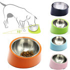 Stainless Steel Dog Cat Bowl Removable Raised Bowl Food Feeder 15 Degree Slanted