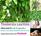 hang over thailand - Thunbergia herbal anti alcohol drug drunk hangover detoxify Treatment Capsules