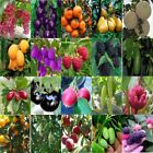 Wholesale Multi-Style Fruit Seeds Garden Yard Potted Plant Seed Bonsai Decor Lot