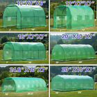 Walk in Greenhouse Larger Hot Green House Canopy Outdoor Garden Plant Gardening