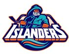 New York Islanders Sticker Decal S134 Hockey YOU CHOOSE SIZE $1.45 USD on eBay