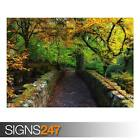 BEAUTIFUL AUTUMN COVER PHOTO (AD977) NATURE POSTER - Poster Print Art A1 A2 A3