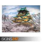 OSAKA CASTLE SPRING (AE074) NATURE POSTER - Photo Poster Print Art * All Sizes