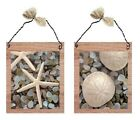 Nautical Pictures Starfish Shells Wall Hangings Tropical Ocean Beach Plaques