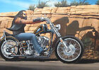 Ghost Rider David Mann Motorcycle Art Silk Poster 8x12 24x36 24x43