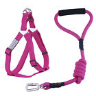 Dog Harness and Leash Set Heavy-Duty Rope Leash Adjustable Pet Puppy Walking
