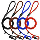 Внешний вид - Nylon Rope Slip Dog Lead 5ft Pet Collar Training Show Leash Red Black Blue Brown