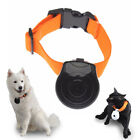 Digital Pet Collar Cam Camera DVR Video Recorder Monitor For Dog Cat Puppy NEW