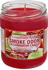 Внешний вид - Smoke Odor Exterminator Cinnamon Apple 13oz by Smokers Candle, 13 oz