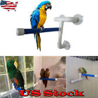 Suction Cup Plastic Parrot Shower Stand Rack Platform Bird Standing Bath Perch