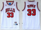 New Men's Chicago Bulls #33 Scottie Pippen Basketball Mesh jersey White on eBay
