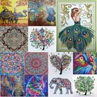 Внешний вид - 5D DIY Special Shaped Diamond Painting Cross Stitch Embroidery Mosaic Kits Decor
