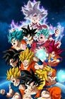 Dragon Ball Z Super Poster Goku All Tranformations Ultra Instinct - 11x17 13x19