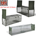 Steel Life Trap Sturdy Reinforced Frame Foldable Mesh hole size 2.54x2.54 cm UK