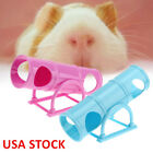 Kyпить Hamster Exercise Seesaw Tube Tunnel House Pet Rat Mouse Training Playing Toy US на еВаy.соm