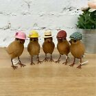 Dcuk  Wooden Coloured Hat Garden Bird Home Decorative Figurine Ornaments