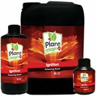 Plant Magic Ignition 250ml/1L/5L Pre-Flowering Boost Bigger Yields Nutrients