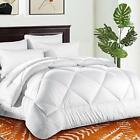 TEKAMON All Season Queen Comforter Winter Warm Soft Quilted Duvet Snow White image