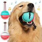 EY_ New Pet Dog Multifunction Leakage Food Ball Suction Cup Squeaky Molar Chew T