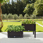 Raised Garden Bed Outdoor Elevated Planter Box Stand Vegetable Flower Backyard