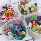 Dried Flower Candle Epoxy Resin Pendant Necklace Jewelry Making Diy Accessories