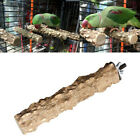 Wooden Parrot Bird Stand Holder Hanging Cage Paw Grinding Perch Chew Pets Toys