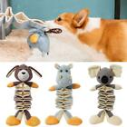 Dog Squeak Toys Chew Toy and Squeak Toy Intelligence