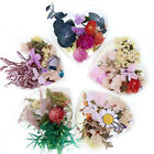 DIY Bulk Dried Flowers Aromatherapy Candle Epoxy Resin Filling Craft Accessories