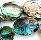 """12x18mm Natural Colorful Sea Shell Beads 15.5"""""""