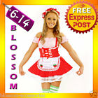 Ladies Strawberry Shortcake Fancy Costume + Stockings
