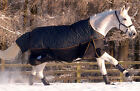 Masta Turnoutmasta 200g Zebra 600 Denier Mediumweight Winter Horse Turnout Rug