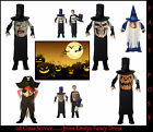 WIZARD PIRATE SKULL JEKYL Mad Hatter Boys Fancy Dress Costume MED or LARGE