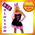 F83 Ladies Cheshire Cat Kitten Alice in Wonderland Fancy Dress Up Party Costume